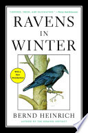 Ebook Ravens in Winter Epub Bernd Heinrich Apps Read Mobile