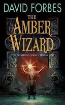 download ebook the amber wizard pdf epub