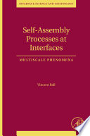 Self Assembly Processes at Interfaces