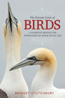 The Private Lives of Birds