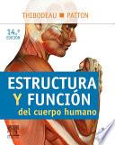 Estructura Y Funci N Del Cuerpo Humano Studentconsult En Espa Ol