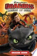 Dragons: Riders of Berk Vol. 1: Dragon Down by Simon Furman
