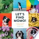 Let s Find Momo