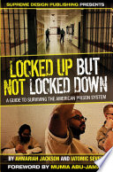 Locked Up but Not Locked Down Pdf/ePub eBook