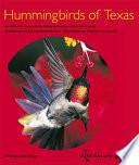 Hummingbirds Of Texas