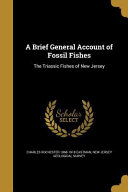 BRIEF GENERAL ACCOUNT OF FOSSI