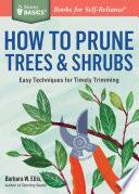 How to Prune Trees   Shrubs