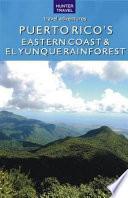 Puerto Rico S Eastern Coast El Yunque Rainforest