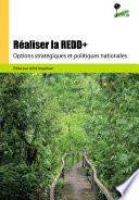 Réaliser la REDD+ : options stratégiques et politiques nationales