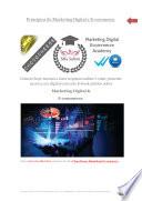 Princ  pios do Marketing Digital e E commerce