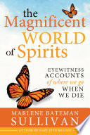 The Magnificent World of Spirits