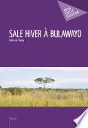 Sale hiver à Bulawayo -