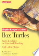 Box Turtles Advice On Caging Feeding And Watering Health And