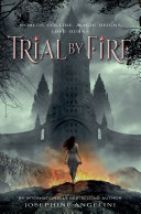 Trial by Fire Best Books I Ve Read This Year