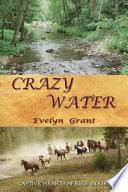 Crazy Water The Four Men Who Find Him