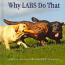 Why Labs Do That