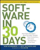 download ebook software in 30 days pdf epub