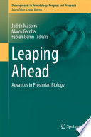 illustration Leaping Ahead