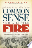 Common Sense and a Little Fire  Second Edition