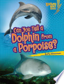 Can You Tell a Dolphin from a Porpoise? Dolphins And Porpoises Even Though They
