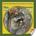 What Forest Animals Eat     Qu   comen los animales del bosque