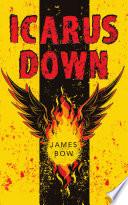 Icarus Down Book PDF
