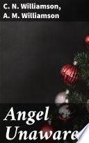 Angel Unawares