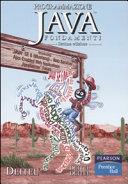 Programmazione Java Fondamenti