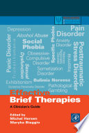 Effective Brief Therapies