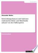 Entwicklungschancen und Optionen ostdeutscher Klein- und Mittelstädte anhand von drei Fallbeispielen