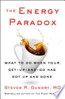 The Energy Paradox Book PDF