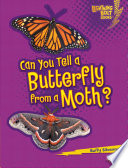 Can You Tell a Butterfly from a Moth? Butterflies And Moths Even Though They
