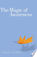 The Magic of Awareness