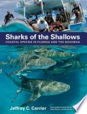 download ebook sharks of the shallows : coastal species in florida and the bahamas pdf epub