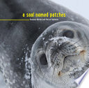 A Seal Named Patches