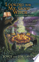 Looking for Mr  Good Witch