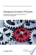 Management komplexer IT-Projekte
