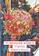 The Wonder World of Ants