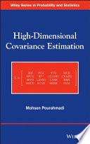 High Dimensional Covariance Estimation