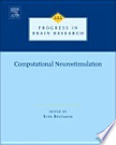 Computational Neurostimulation