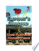 Elephant s Graveyard