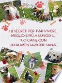 I 9 segreti per far vivere meglio e pi   a lungo il tuo cane con un alimentazione sana