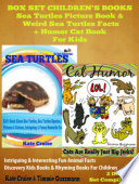 Sea Turtles   Cats  Amazing Photos   Facts   Endangered Animals