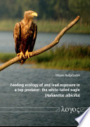 Feeding Ecology of and Lead Exposure in a Top Predator