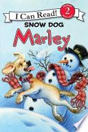 Marley  Snow Dog Marley