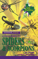 A Field Guide to Spiders   Scorpions of Texas