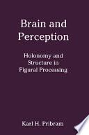 Brain And Perception