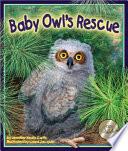 Baby Owl s Rescue