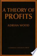 A Theory of Profits