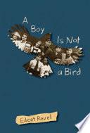 A Boy Is Not a Bird Book PDF